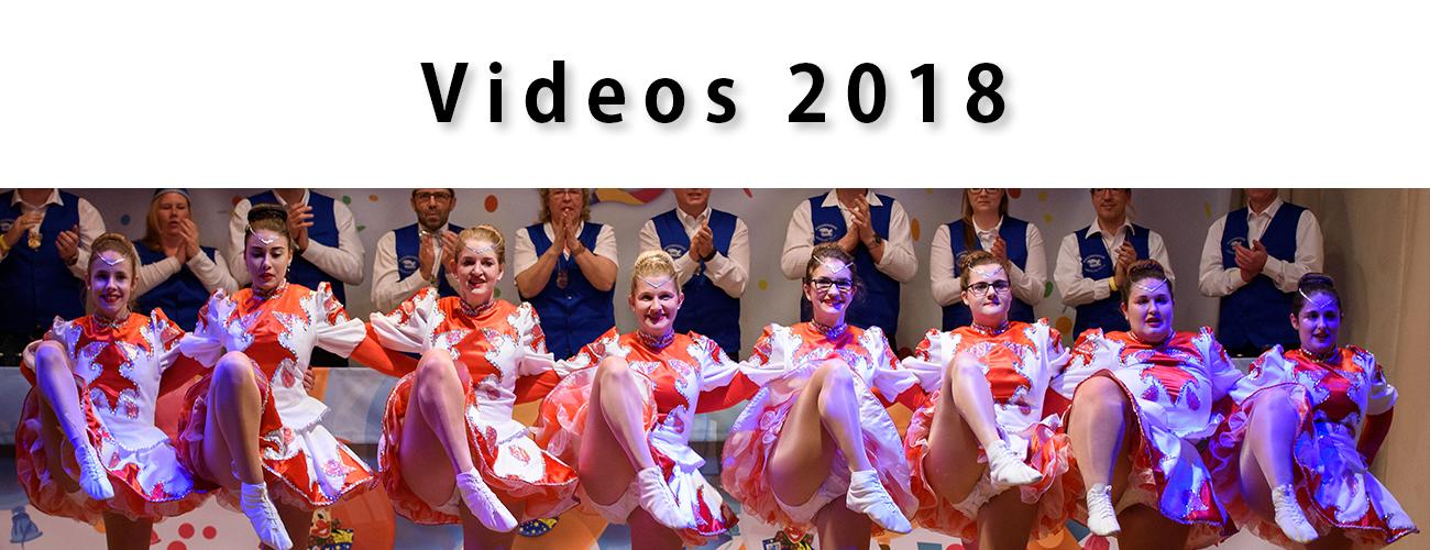 Videos 2018